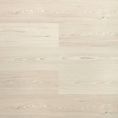 Panele podłogowe  Pinia Tripoli