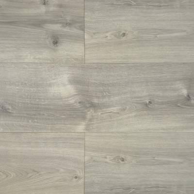 Panele  podłogowe    Dąb Wellington